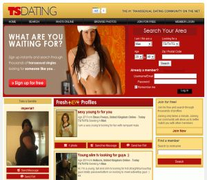 TS Dating image
